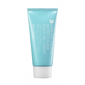 Mizon Water Volume Aqua Gel Cream - niisutav geel-kreem