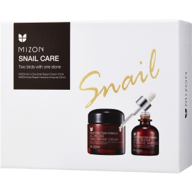 Mizon kinkekomplekt teolimaga näokreem 75ml + seerum 30ml